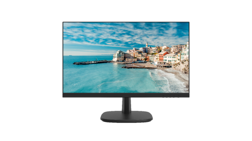 23.8 inch FHD Borderless Monitor